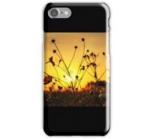 Dragonflies resting on cosmos iPhone Case/Skin