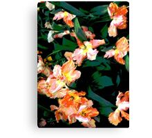 Yellow and Orange Parrot Tulips Canvas Print
