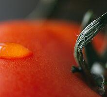 Tomato Drop by Kyra Savolainen