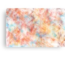 Different Brush Strokes for Different Folks Canvas Print
