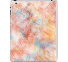 Different Brush Strokes for Different Folks iPad Case/Skin