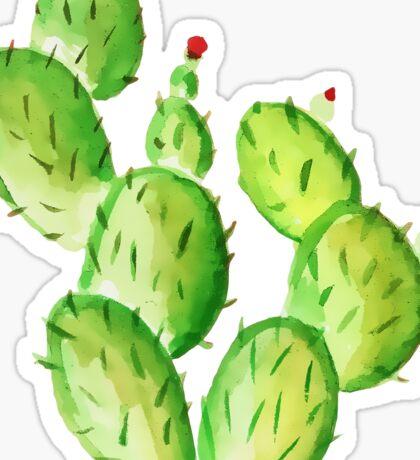 watercolor cactus print Sticker