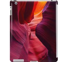 Desert Symphony iPad Case/Skin