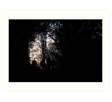 In the gloaming Art Print