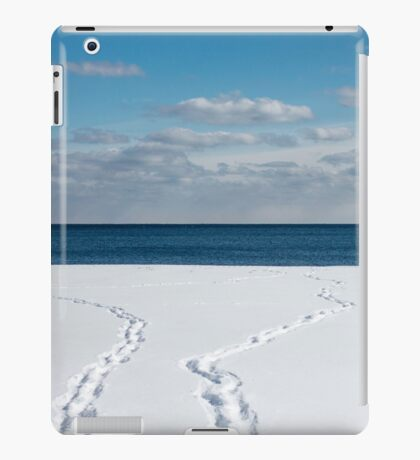 Winter Walks iPad Case/Skin