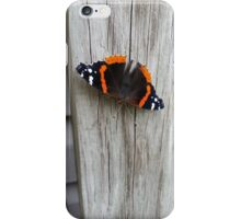 Admiral Butterfly iPhone Case/Skin