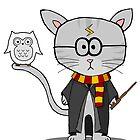 Harry Potter- Gizmo The Cat by LJefferis78