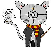 Harry Potter- Gizmo The Cat by LJefferis78