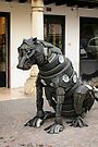 Tyred Cat, Asolo, Italy by Andrew Jones