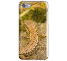 Two Salamanders enjoying a restful break iPhone Case/Skin