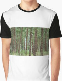 Trees of Kettle Falls Graphic T-Shirt