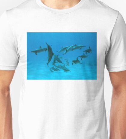 Red Sea Ballet T-Shirt