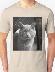 Italian Cat T-Shirt