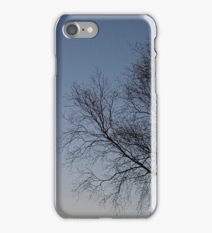 Tree silhouette at Sunset iPhone Case/Skin
