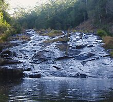 The Rapids - Elands NSW by Liz Worth