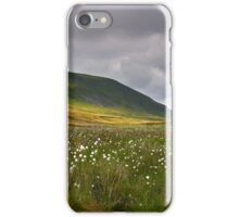 Summertime at Pen Y Ghent iPhone Case/Skin