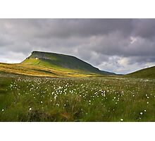 Summertime at Pen Y Ghent Photographic Print