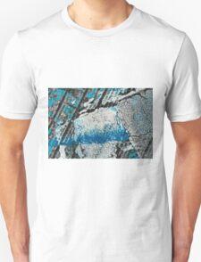 Blue Canyons Colliding Unisex T-Shirt