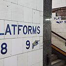 Platform 8 & 9 by Sally McLean