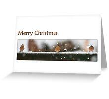 Garden Birds - Merry Christmas Greeting Card