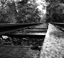 Lilydale Railway by Keith Midson