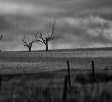 prayers for rain by Keith Midson