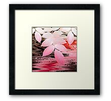 Stream Melody, Morning Framed Print