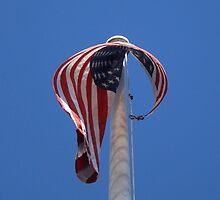 Old Glory~ by virginian