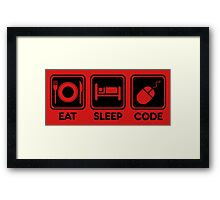 Programmer Eat Sleep Code Framed Print