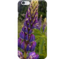 lupine iPhone Case/Skin