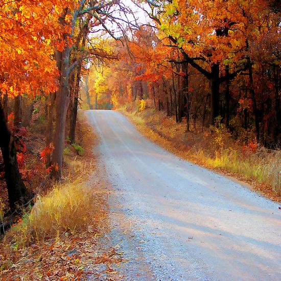 Fall in Oklahoma by JohnDSmith