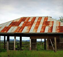 Old Barn with a View by Jenelle  Irvine