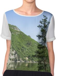 Lean In - a Lone Pine on the Lake Shore Chiffon Top