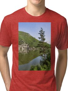 Lean In - a Lone Pine on the Lake Shore Tri-blend T-Shirt