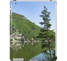 Lean In - a Lone Pine on the Lake Shore iPad Case/Skin