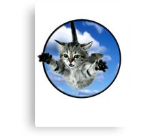 skydiving cats Canvas Print