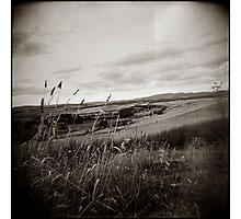 { sleepy countryside } Photographic Print