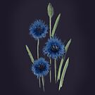 Cornflower Very Very Blue by Rasendyll