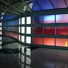 Chicago by Adria Bryant