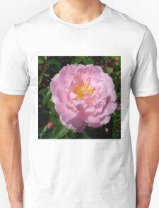 Light Pink Shrub Rose Unisex T-Shirt