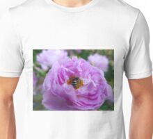 Pink Shrub Rose with Insect Unisex T-Shirt