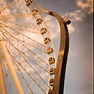 Wheel of Brisbane by R-Walker