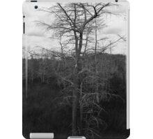 Winter Cypress Trees iPad Case/Skin