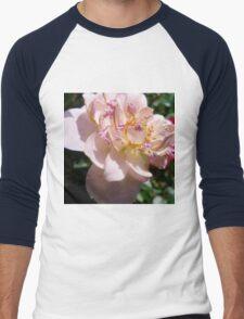 Blooming Pink Rose Men's Baseball ¾ T-Shirt