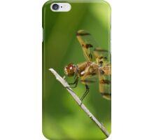 Enter The Dragon iPhone Case/Skin