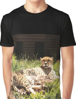 Cheetah Lounge Graphic T-Shirt