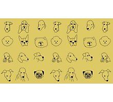 Dog Doodles Photographic Print
