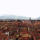 Lucca, Italy  by annoregni