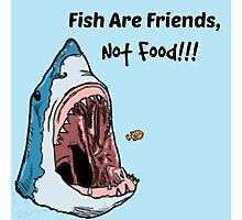 Fish Are Friends Photographic Print