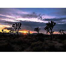 Amazing Sunset Sunrise over Joshua Tree Park Photographic Print